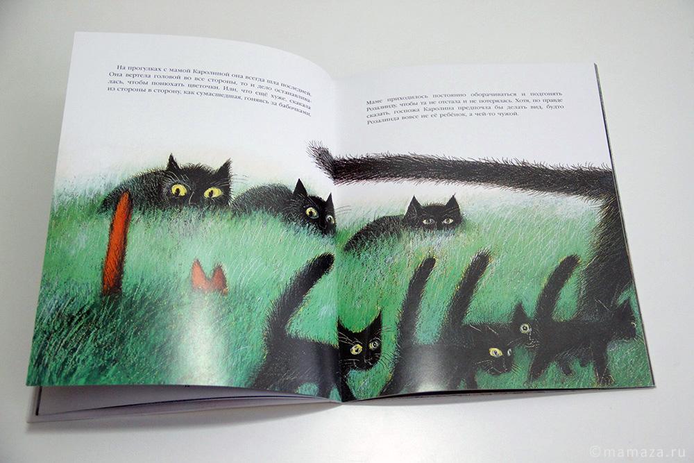 «История про кошку Розалинду, непохожую на других»